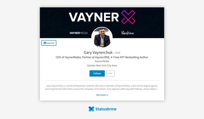 vayner linkedin profile