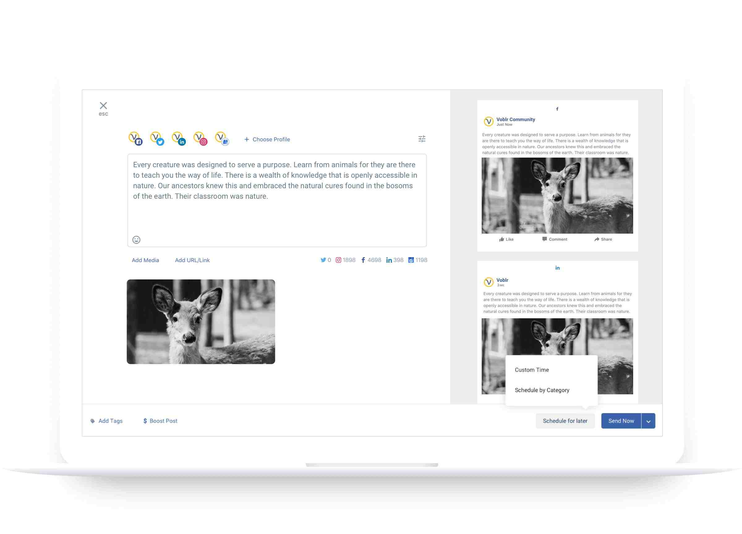 Google My Business Publishing - Statusbrew