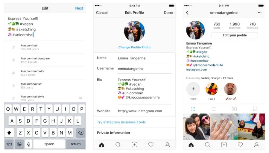 Hashtags in Instagram Bio